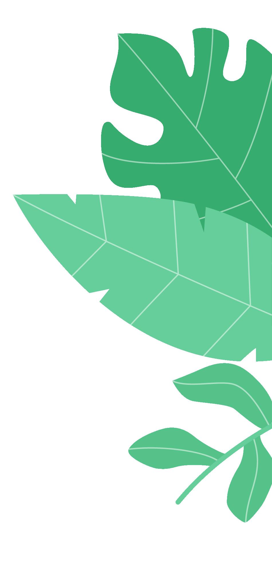 seize_vegetation_2.png